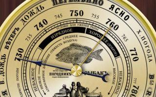 Лучшие барометры для рыбалки и где их купить?