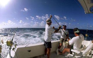 Рыбалка на острове Крит — цены и особенности