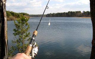 Рыбалка на голавля на бомбарду