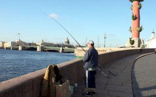 Лучшие места для рыбалки на Неве