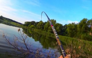 Удочки для рыбалки в летнее время