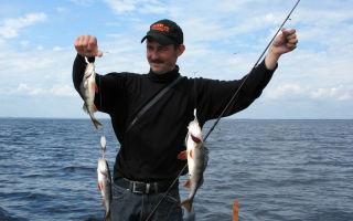 Ловля рыбы на гирлянду летом и зимой