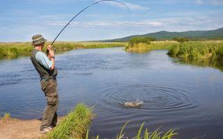 Платная рыбалка на Озернинском водохранилище — стоимость путевки и отчеты