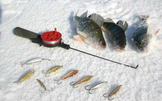 Как и на какие приманки ловить окуня зимой — тонкости ловли