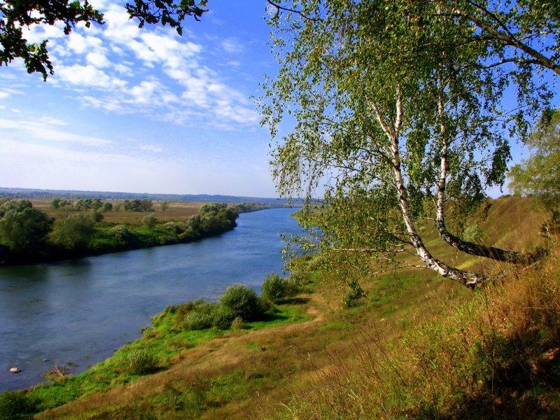 Отчеты о рыбалке в Тульской области