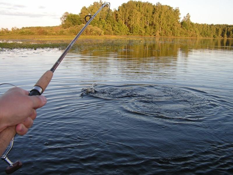 Рыбалка на хищника ранней весной