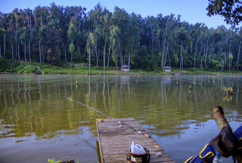 Лагуна рыбалка