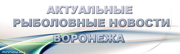 Минноу Воронеж