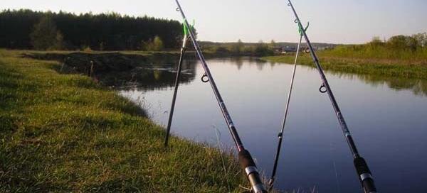 Удочки для летней рыбалки