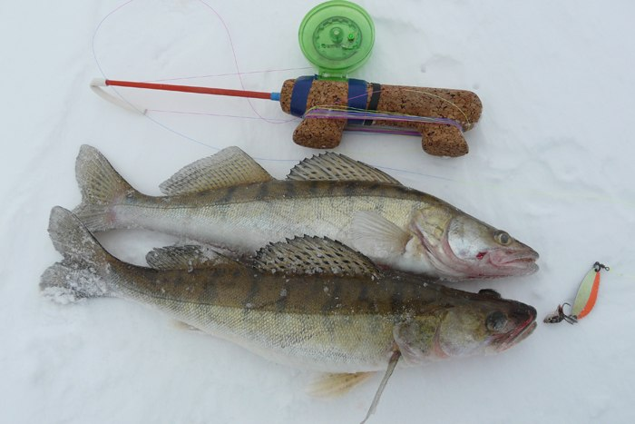Рыбалка по первому льду на балансир
