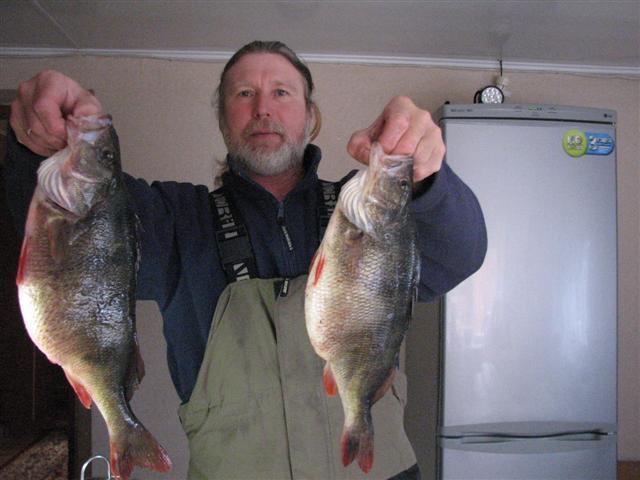 зимняя рыбалка на маныче