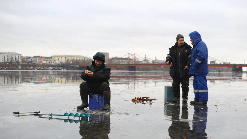 Зимняя рыбалка вид из подо льда видео