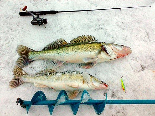 зимняя снасть вертолет для зимней рыбалки
