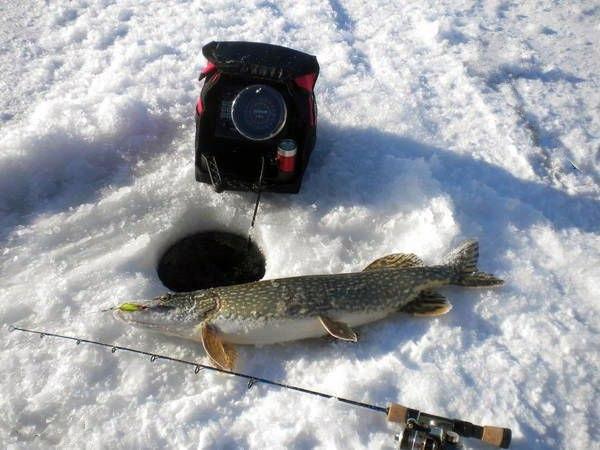 Преимущества эхолота в зимней рыбалке