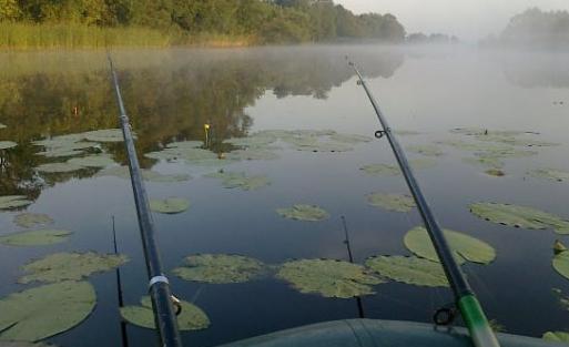 Рыбалка с лодки или с берега?