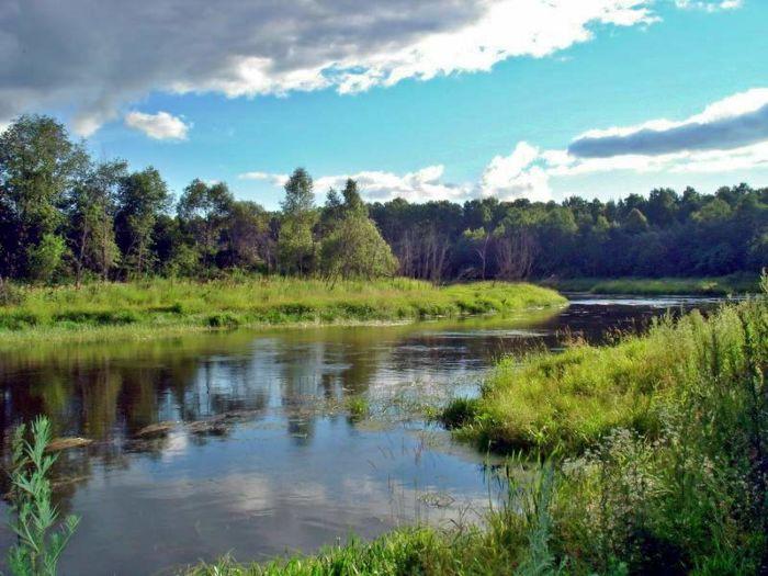 Рыбалка на фидер на реке
