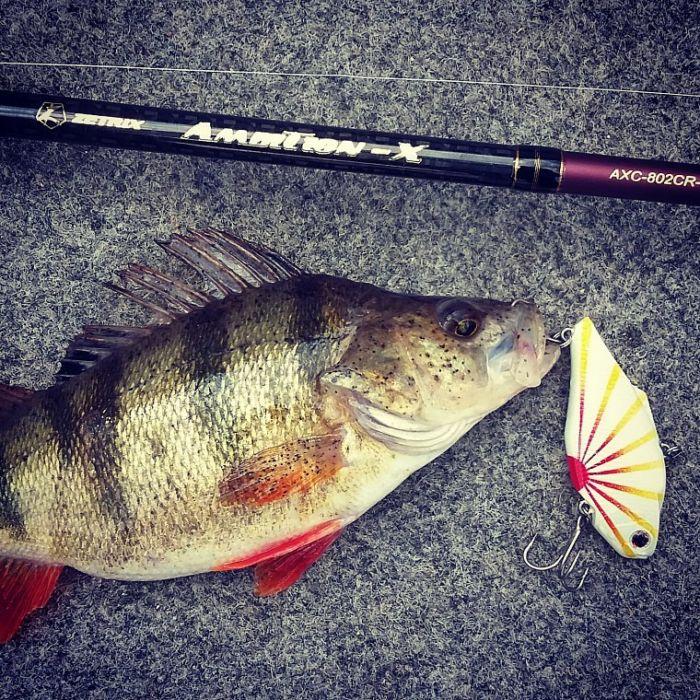 Стрелецкий ручей - рыбалка